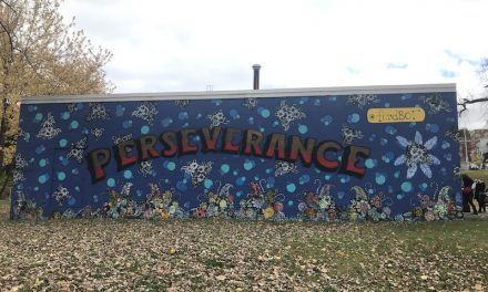 New mural in North Central Troy incorporates community and brings light to the neighborhood