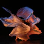 Arts events of the week: March 2-8